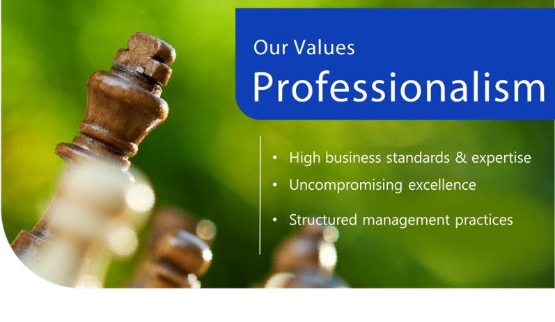 our values-professionalism